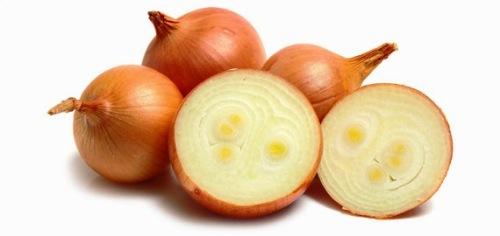 Onions_570