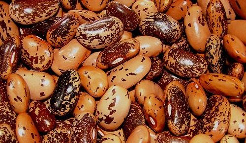 Pinto_beans