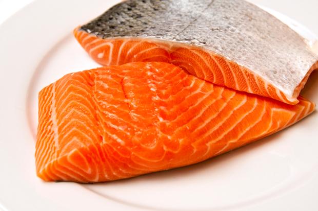 salmon-filets-