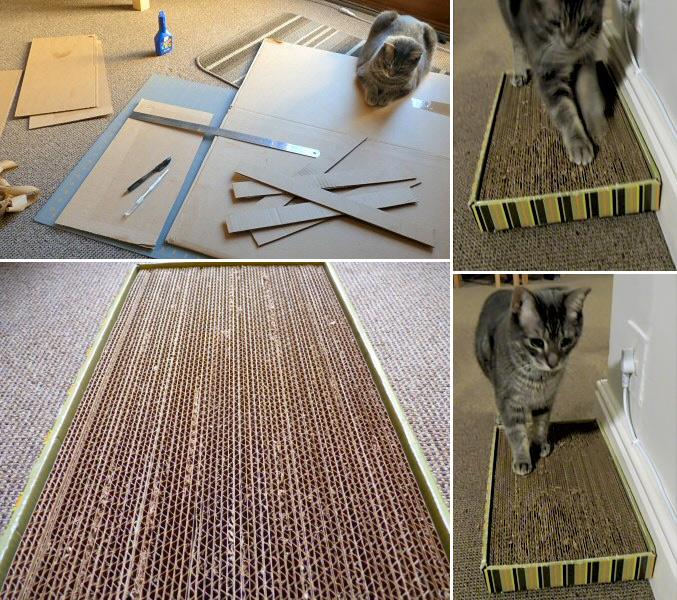 cardboard-cat-scratcher-collage
