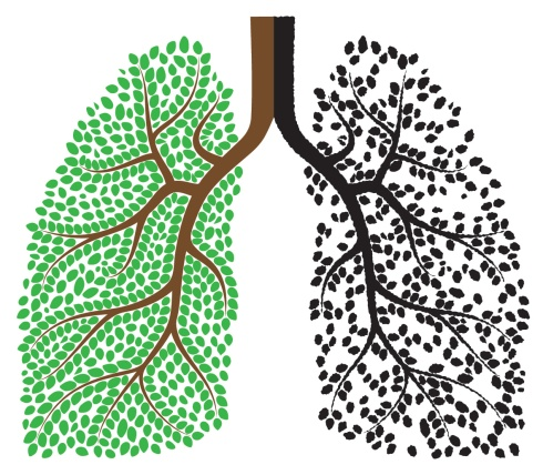 lungs-good-bad-shutterstock_128313806